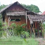 A birdwatching hut in Langkawi