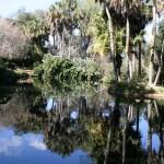 Bok Tower Gardens pond