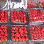 Strawberries for sale in the Cameron Highlands