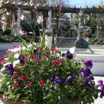 Hollis Garden planter