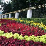 The gardens of the King's Palace (Istana Negara)