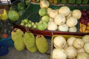 Durian fruit for sale (bottom left) at the Tropical Fruit Farm