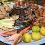 Tropical Spice Garden samplings