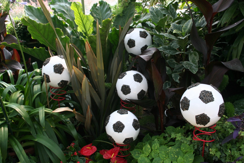 The Men's and Women's Football/Soccer competition for the Pan Am Games is recognized at the Niagara Parks Floral Showhouse with balls ready for goal scoring among the tropical plants.