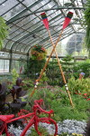To acknowledge the Pan Am and Parapan Am Games rowing events that will be taking place in St. Catharines, the Floral Showhouse included real oars in their summer floral display.