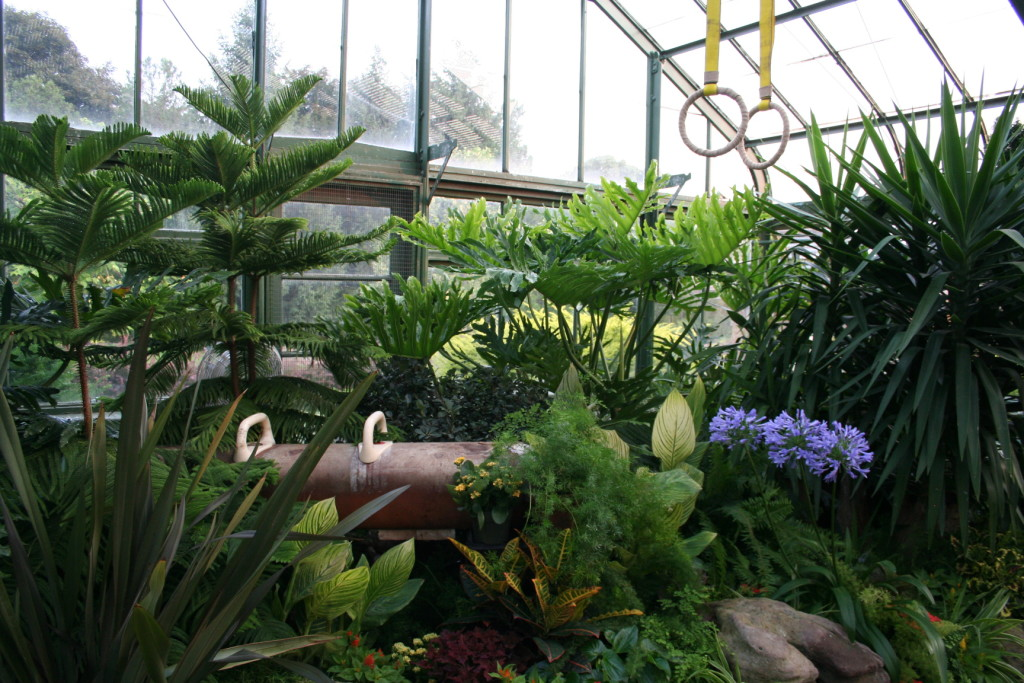 A surprise greets visitors to the Floral Showhouse when they see a real pommel horse on display among the tropical plants.