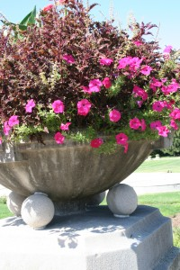 Often containers are just as important to the overall visual display as the plants they hold.